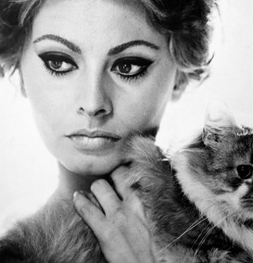 topu.ro*wp-content*uploads*2012*04*Sophia-Loren